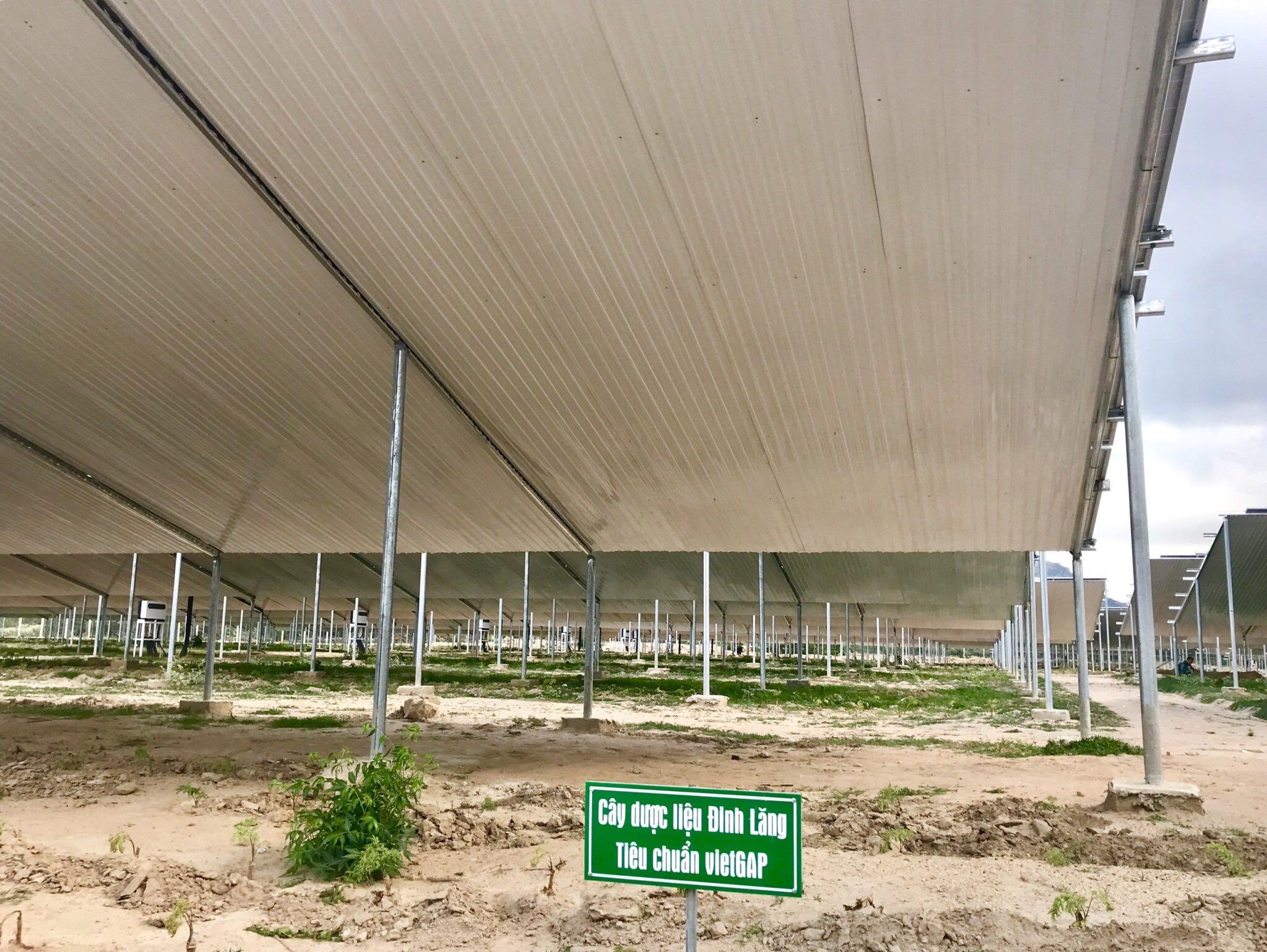 Dự án 3MW Thuận Nam-Ninh Thuận