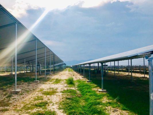 dự án năng lượng mặt trời của công ty Quang Trung tại Bình thuận